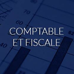 Expertise comptable et fiscale