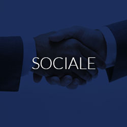 Expertise sociale